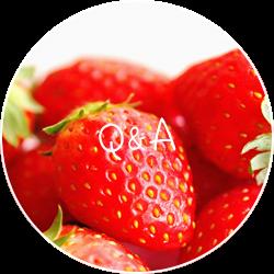 Q&A リンク