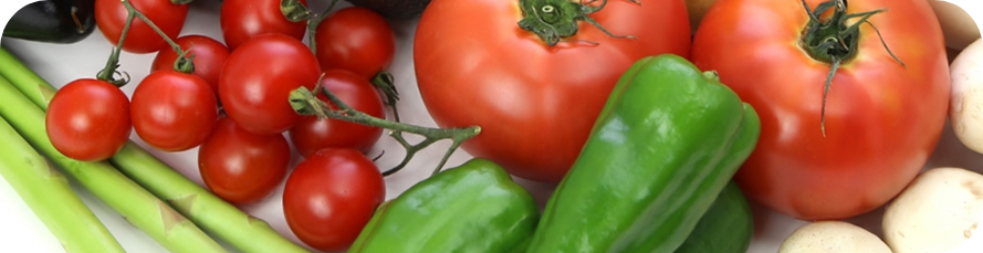 野菜体験main画像